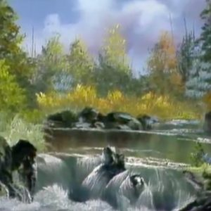 Waterfall and Rapids