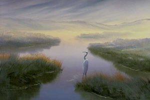 Wetland Heron