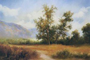 Oaji Valley