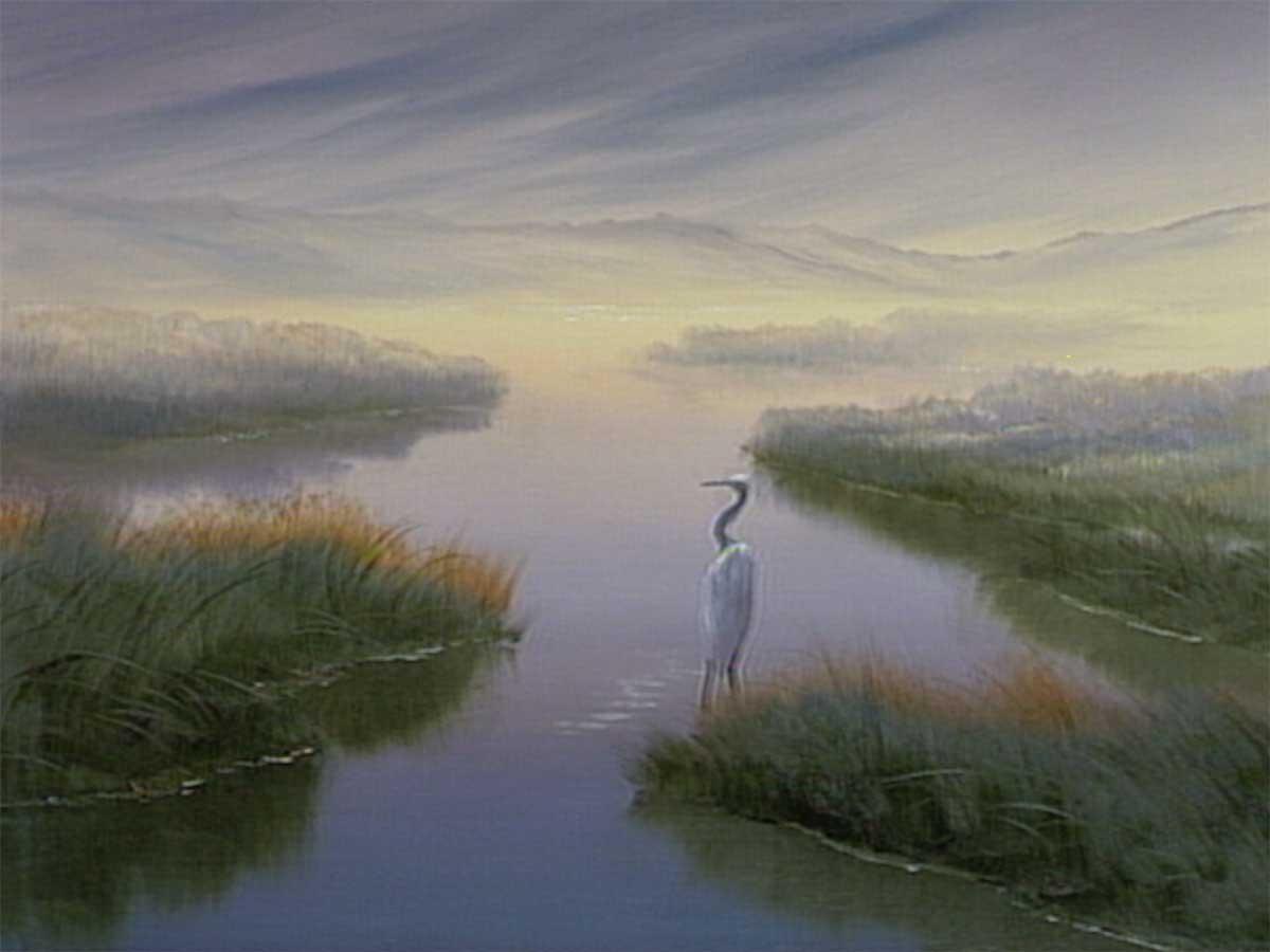 Wetland-Heron1200