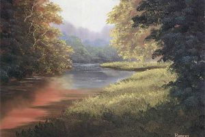 Quiet Summer Stream